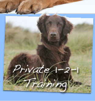 Private 1-2-1 training